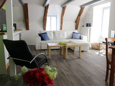 Living-room for 2 or 4 people in Besse, house rental in Auvergne